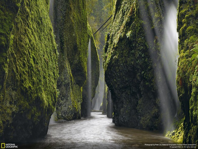 beautiful nature - Columbia River Gorge, Oregon
