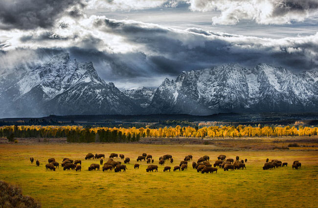 beautiful image - Teton National Park
