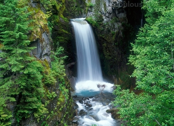 Christine Falls Is A Waterfall On Van Trump Creek In Pierce County Washington The Are 69 Feet 21 M High And Best Known For Having