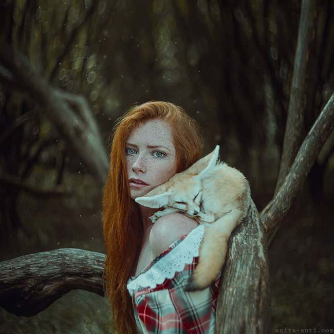 fairytale women with animals photos - Foxes