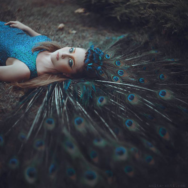 anita anti fairytale photography - Peacock