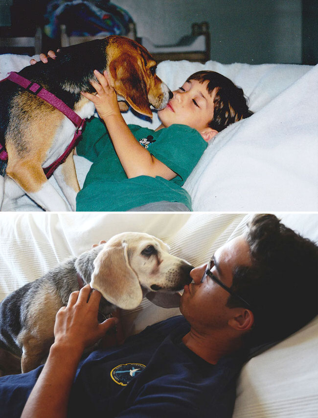 before-and-after-dogs-growing-up-8