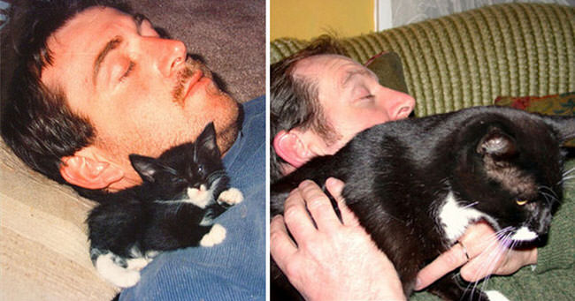 cats-growing-up-pics-2