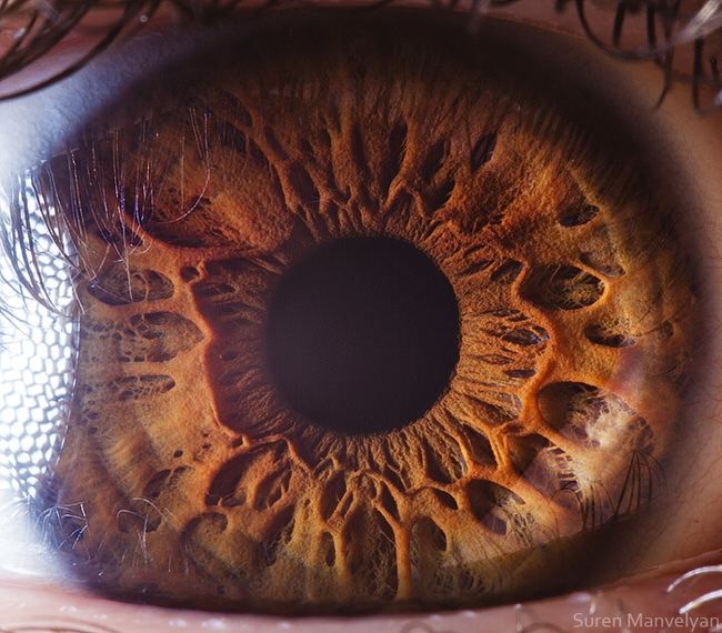 Facebook: Stunning Macro Photography Shows The Beauty Of The Human Eye