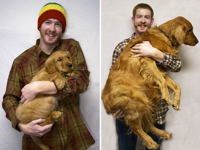 pictures-of-dogs-growing-up-7