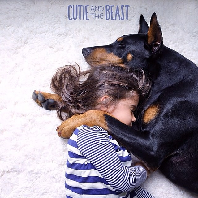 cutie-and-the-beast-dog-and-girl-doberman-best-friends-1