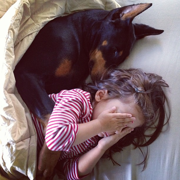 cutie-and-the-beast-dog-and-girl-doberman-best-friends-11
