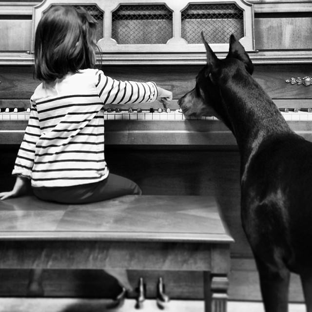 cutie-and-the-beast-dog-and-girl-doberman-best-friends-12