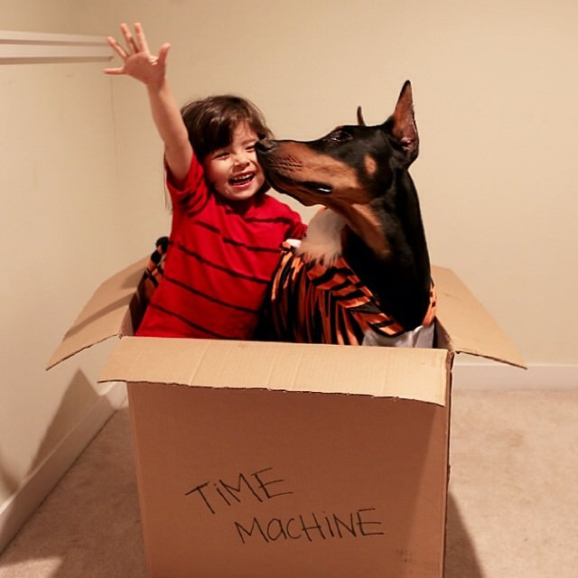cutie-and-the-beast-dog-and-girl-doberman-best-friends-25