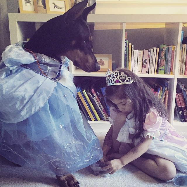 cutie-and-the-beast-dog-and-girl-doberman-best-friends-6