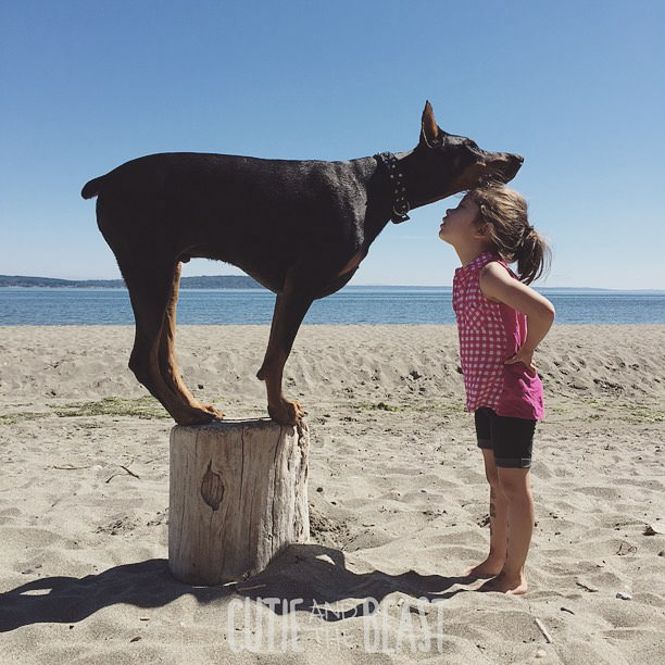 cutie-and-the-beast-dog-and-girl-doberman-best-friends-8
