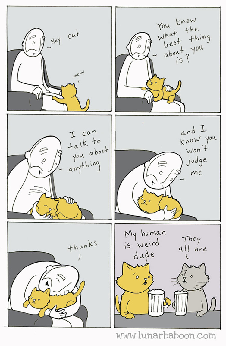 funny-cat-comics-lunarbaboon-4