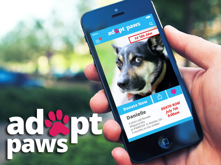 adopt-paws-app-unseen-shelter-animals-1