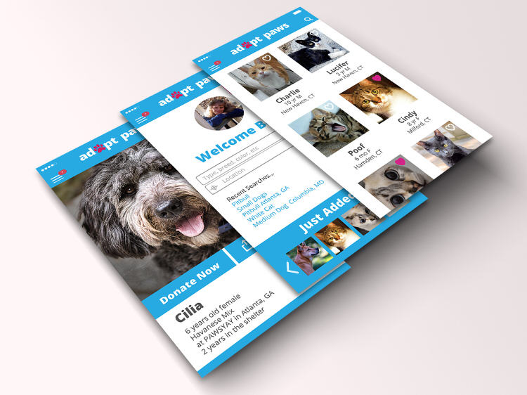 adopt-paws-app-unseen-shelter-animals-2