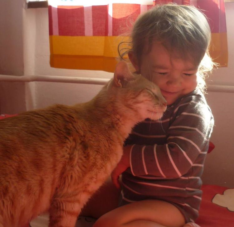 cute-kids-with-cats-12