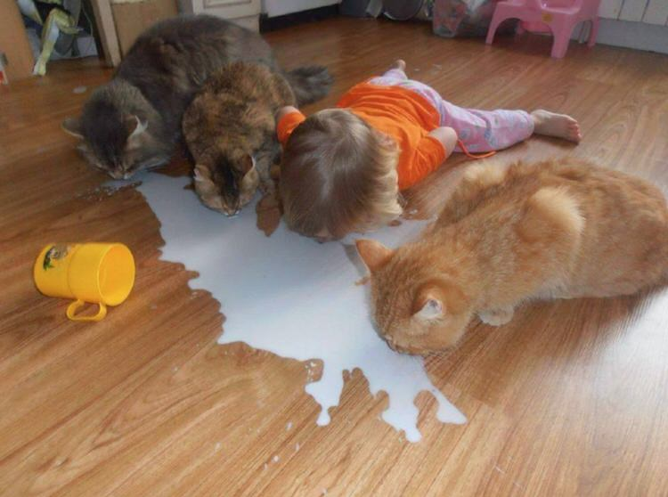 cute-kids-with-cats-13