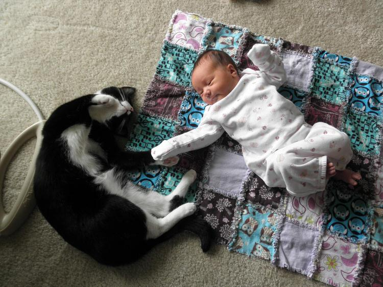 cute-kids-with-cats-2