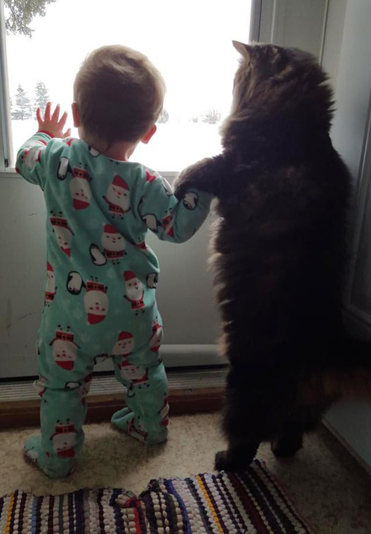 cute-kids-with-cats-3