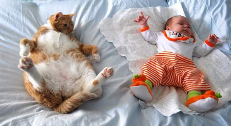 cute-kids-with-cats-8