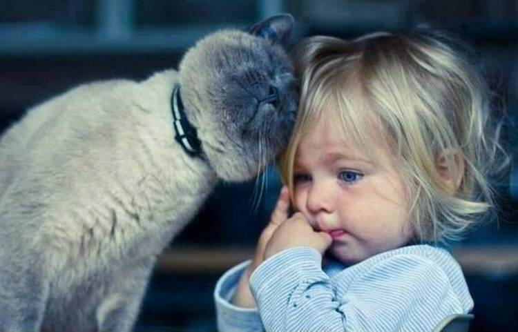 cute-kids-with-cats-9