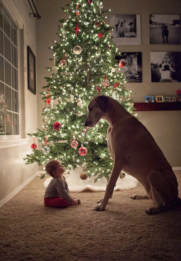 cute-kids-with-dogs-1