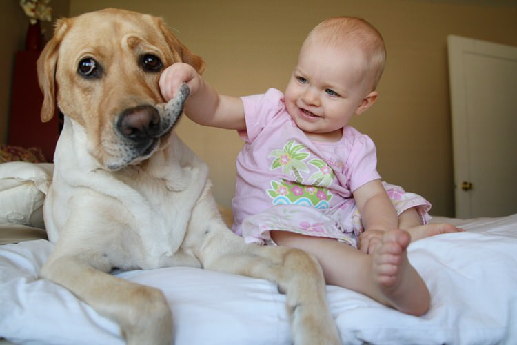 cute-kids-with-dogs-3