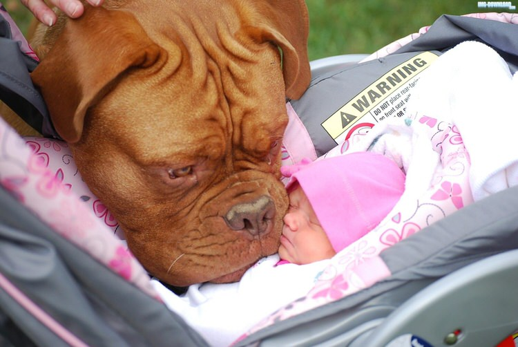 cute-kids-with-dogs-4