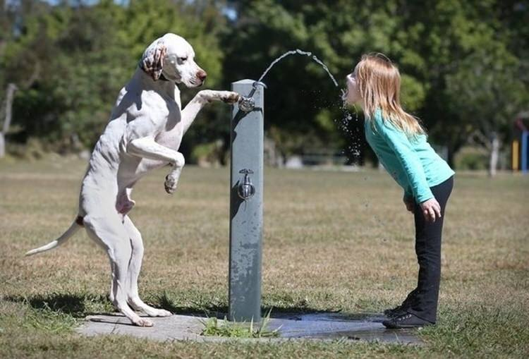 cute-kids-with-dogs-6