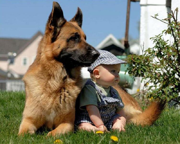 cute-kids-with-pets-5