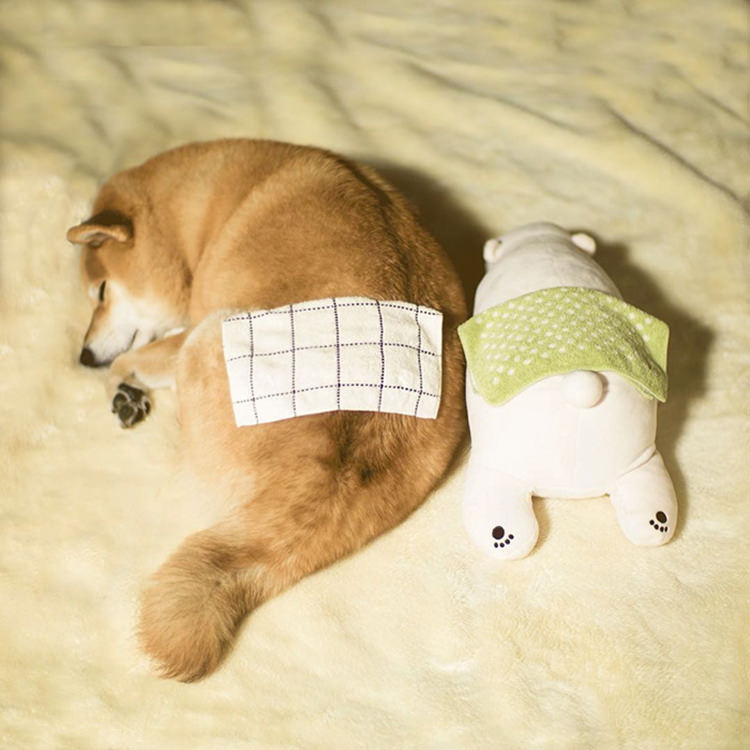 dog-shiba-inu-sleeps-same-position-stuffed-animal-5