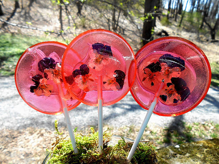 flower-lollipops-food-art-10