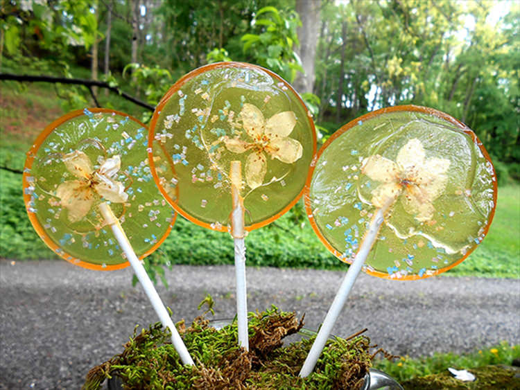 flower-lollipops-food-art-13