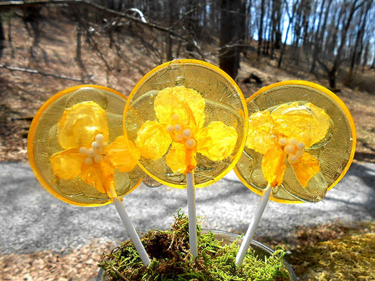 flower-lollipops-food-art-4