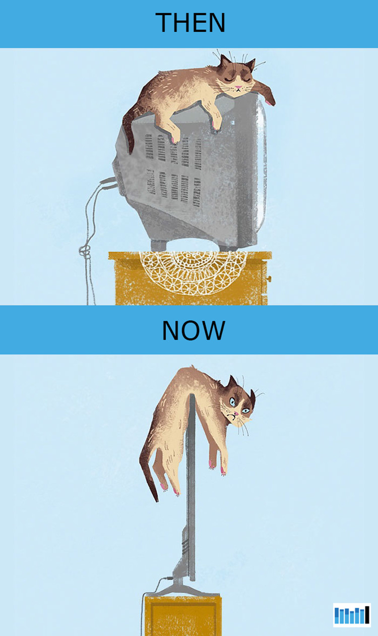 cats-then-now-funny-technology-1