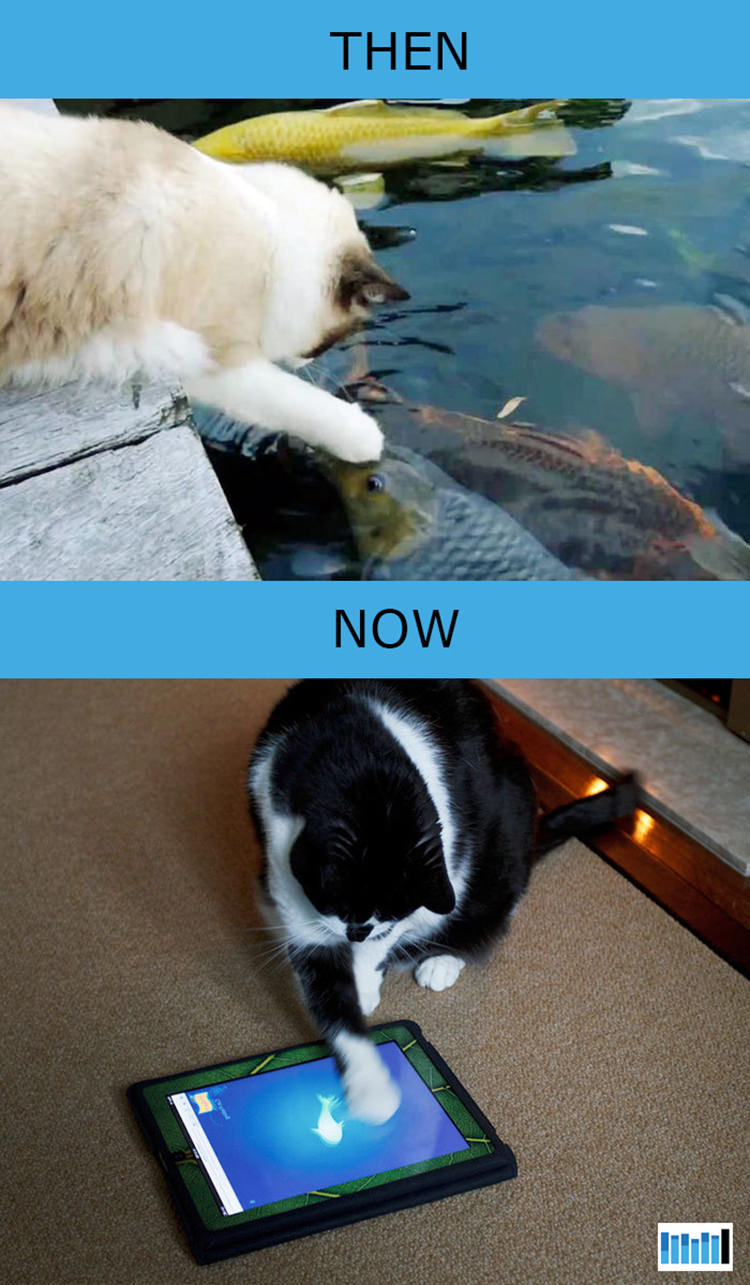 cats-then-now-funny-technology-15