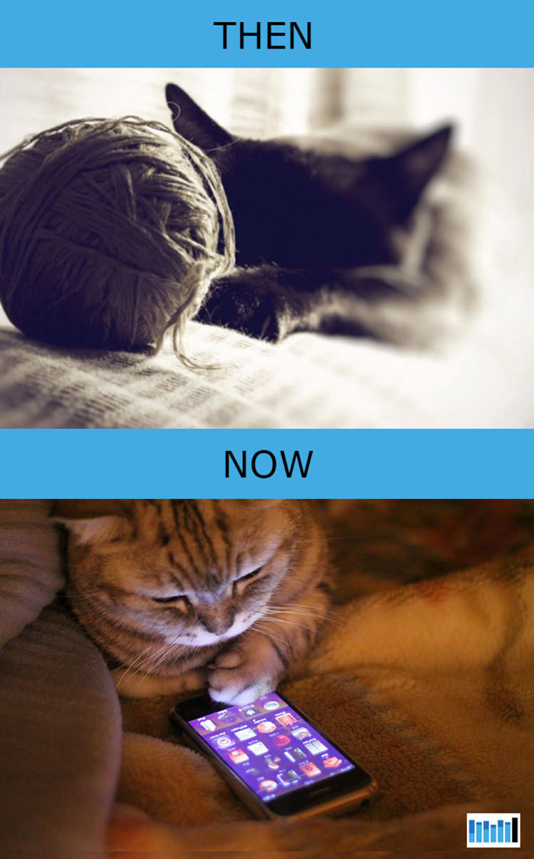cats-then-now-funny-technology-2