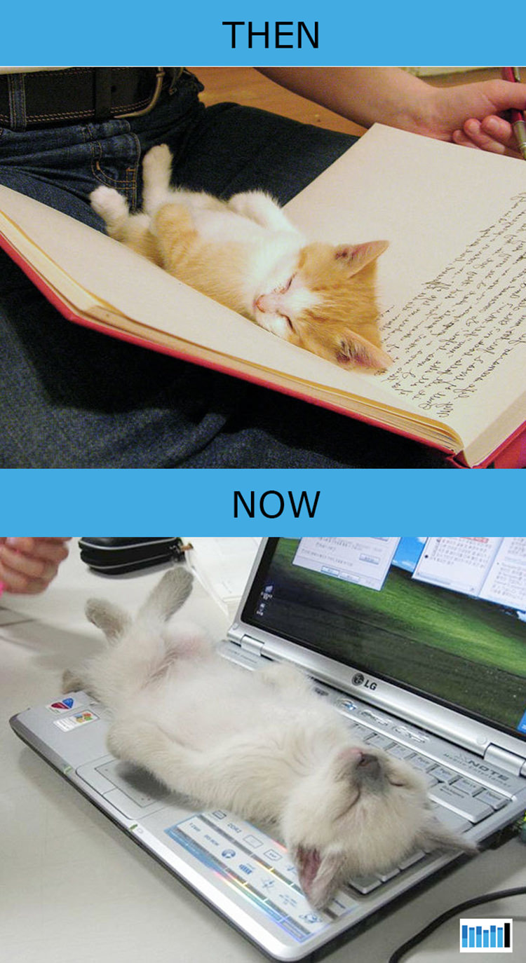 cats-then-now-funny-technology-5