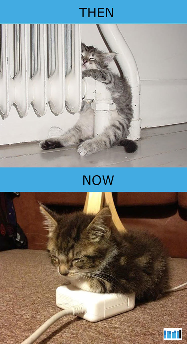 cats-then-now-funny-technology-6