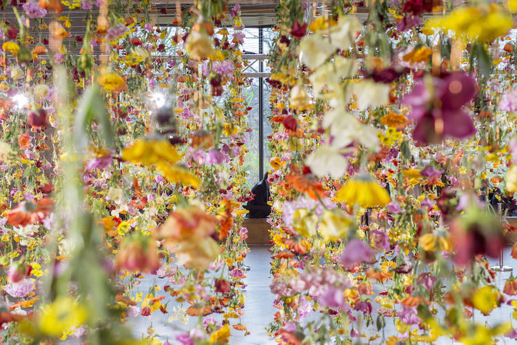 suspended-live-garden-rebecca-louise-law-3