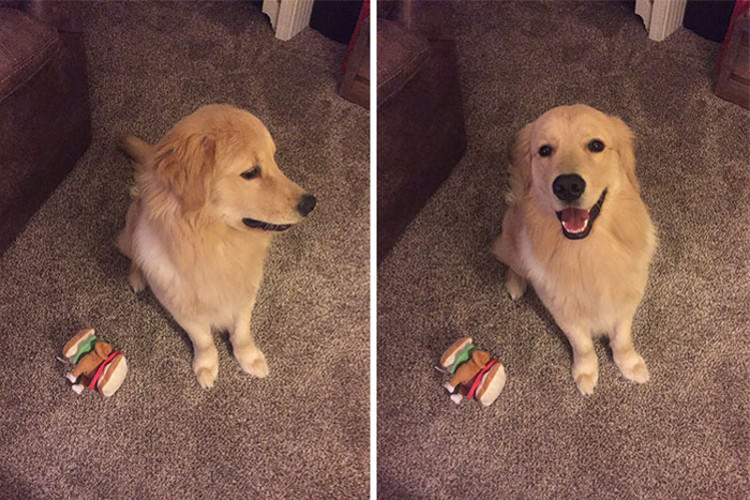 before-after-called-good-boy-8