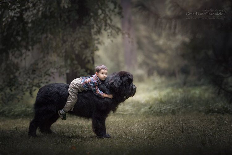 little-kids-big-dogs-andy-seliverstoff-10