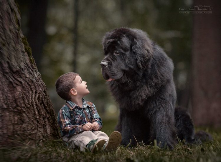 little-kids-big-dogs-andy-seliverstoff-12