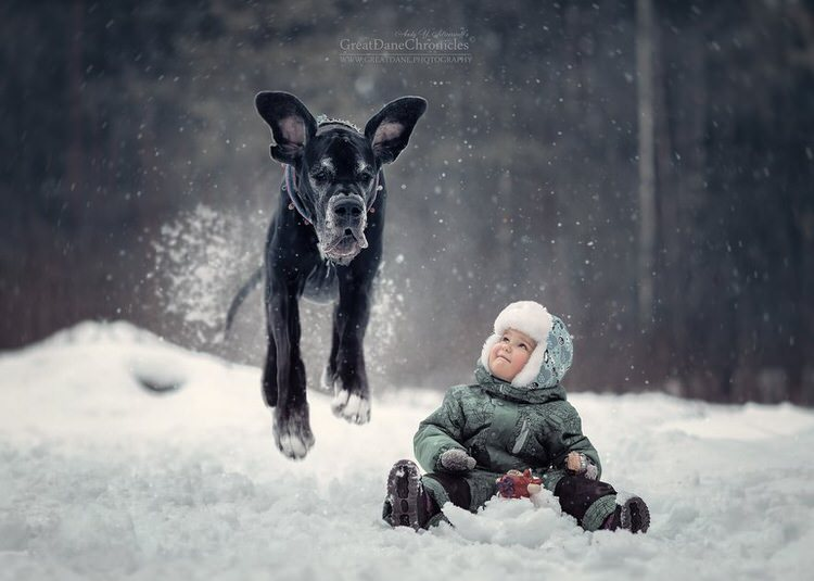 little-kids-big-dogs-andy-seliverstoff-13