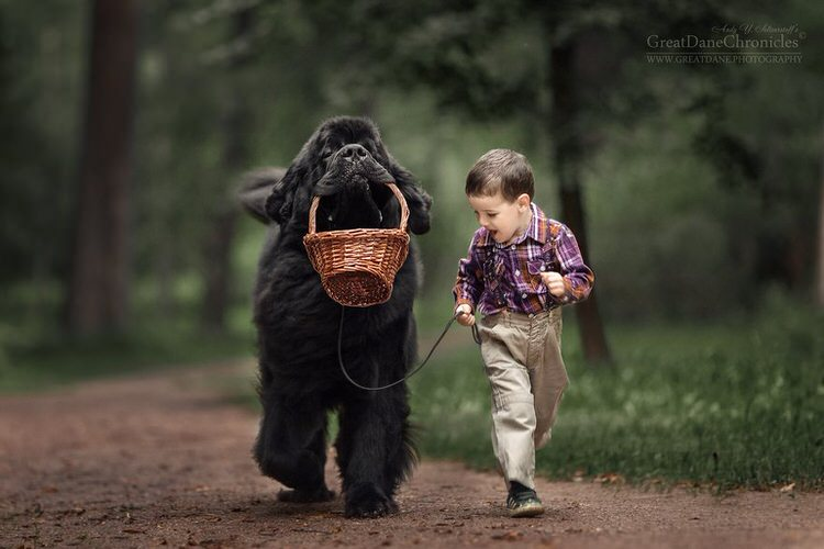 little-kids-big-dogs-andy-seliverstoff-2