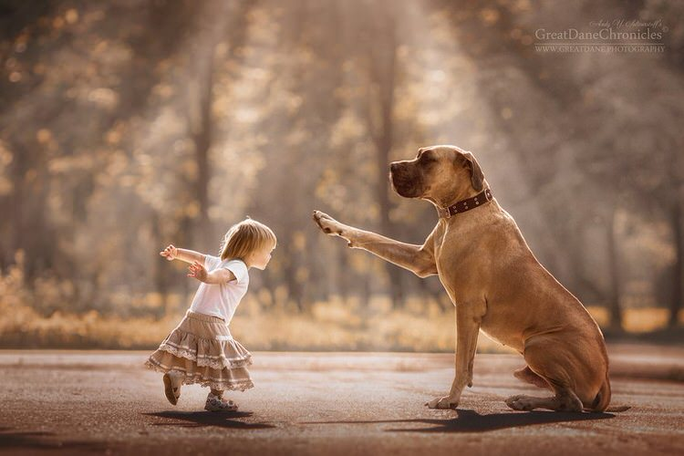 little-kids-big-dogs-andy-seliverstoff-3