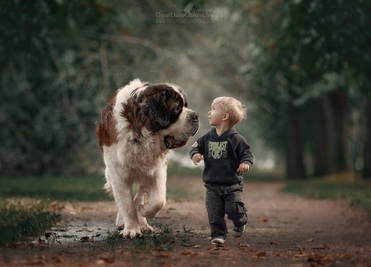 little-kids-big-dogs-andy-seliverstoff-5