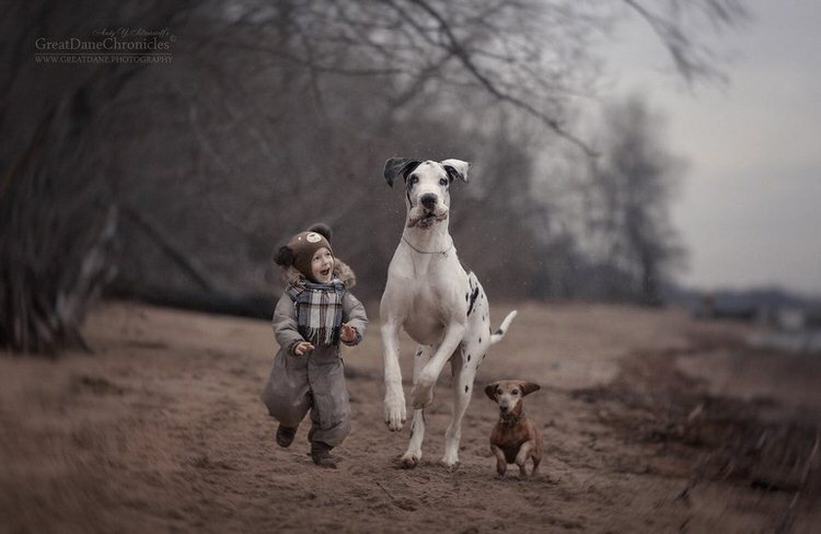 little-kids-big-dogs-andy-seliverstoff-6