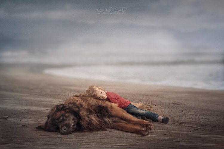 little-kids-big-dogs-andy-seliverstoff-7