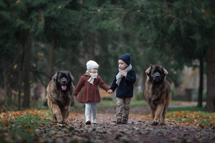 little-kids-big-dogs-andy-seliverstoff-8