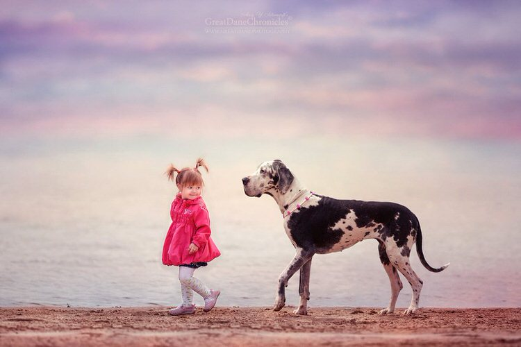 little-kids-big-dogs-andy-seliverstoff-9